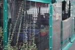 ветроупорни завеси за заведения за защита от вятър и студ