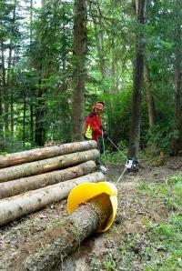 Лебедка за горско стопанство