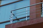 иноксови парапети за балкони