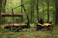 Съоръжения за преместване на дървени трупи
