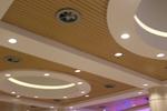 окачени тавани по поръчка