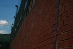 зидане на огради