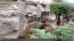 Изграждане на изкуствени скали