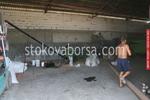 Комбинирани машини за семепочистващи машини произведени в България