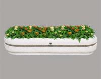 Бетонна кашпа за цветя